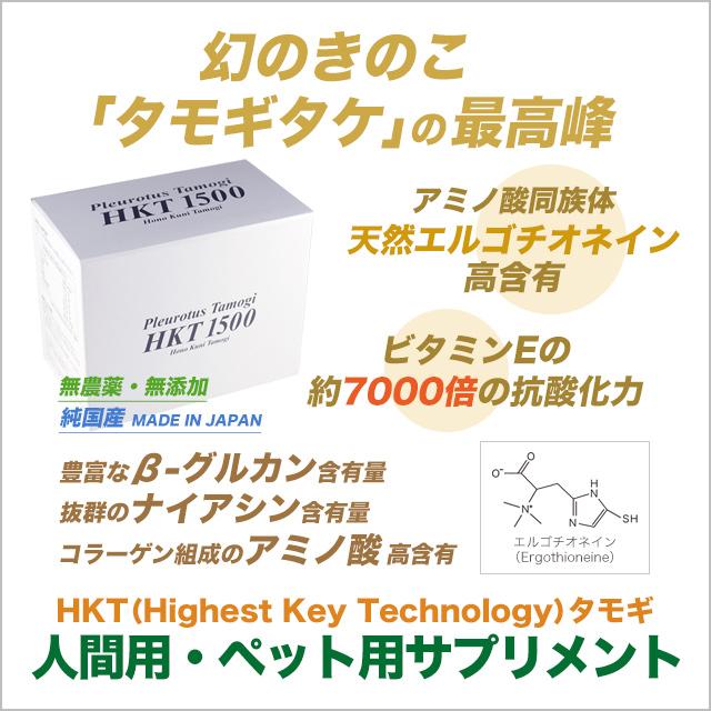 幻のきのこ「たもぎ茸」の最高峰 HKT(Highest Key Technology)タモギ100% HKT1500