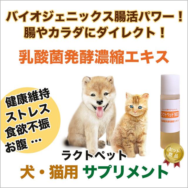 犬・猫専用サプリメント ラクトペットNEO